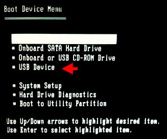 Select USB device in boot device menu